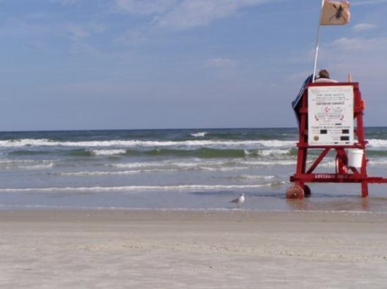Beach at Daytona Beach: Daytona Beach 2007