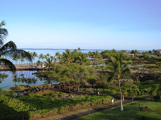 Waikoloa Beach Marriott Resort & Spa: View from oceanfront room