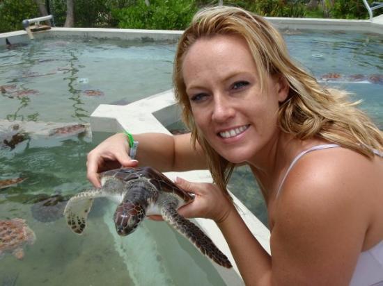 Cayman Turtle Centre: Island Wildlife Encounter ภาพถ่าย