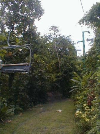 Aerial trams at Coyaba River Gardens and Museum