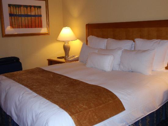 Renaissance Aruba Resort & Casino: Hotel room