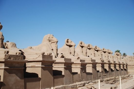 ‪Avenue of Sphinxes‬