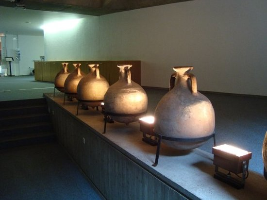 Museum der römisch-gallischen Zivilisation (Musée de la Civilisation Gallo-Romaine)