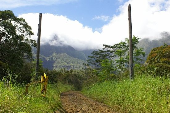 Lihue, Hawaje: The gate to Jurassic Park