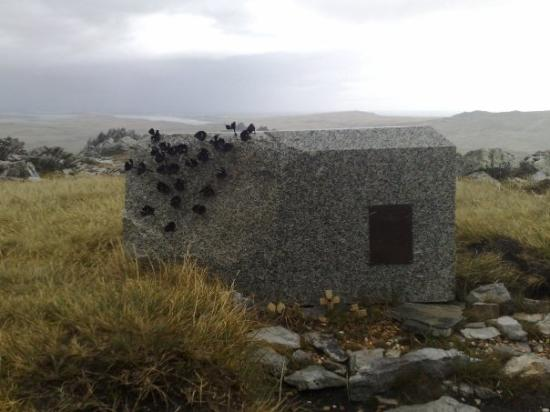Mount Longdon : Anothe tribute to Mackay but also the rest of the dead. There is a poppy for every one of the 23