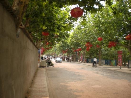 Suzhou (Anhui) China  city photos gallery : Suzhou, China: Lanterne rosse