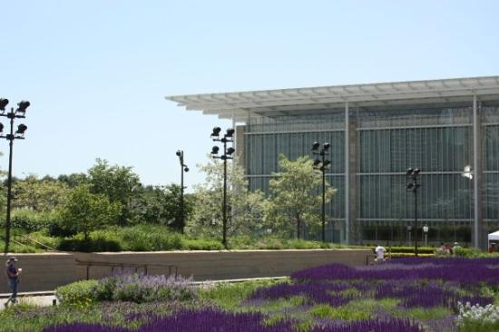 สถาบันศิลปะชิคาโก: The Chicago art museum's new wing.
