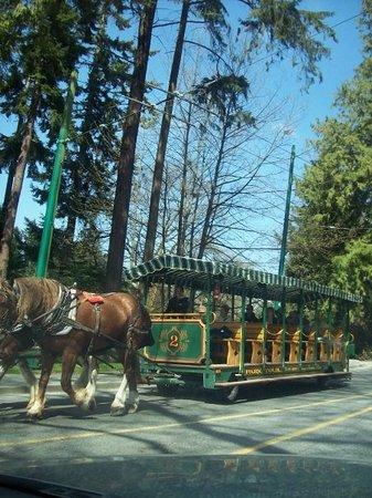 Stanley Park Shuttle