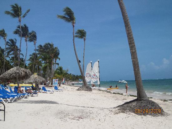Dreams Palm Beach Punta Cana: Beautiful Beach!