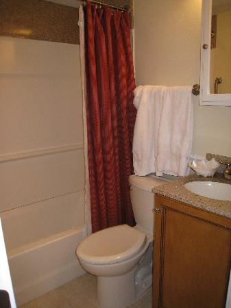 The Cove at Yarmouth: Downstairs bath - no countertop space
