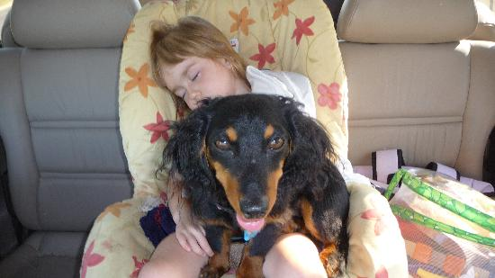 McGaheysville, VA: a bit after the park....  worn out!