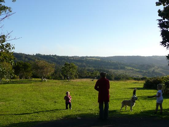 Maleny Hideaway: What a view!