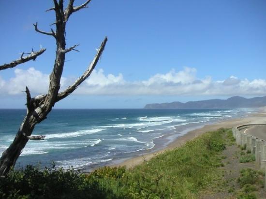 Pacific Ocean Near Tillamook Oregon