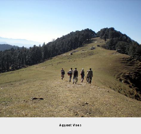 Agyaat Vaas- The Himalayan Retreat: Agyaat Vaas:Jo Bagh:Green Meadows:10600ft