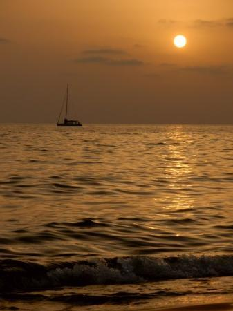 Bilde fra Sabaudia