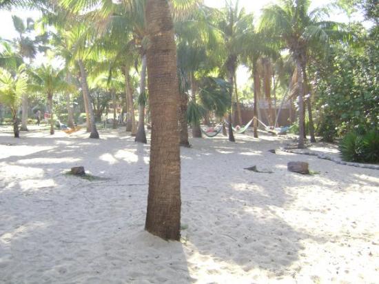 Las hamacas en la playa del hotel para hacer una buena - Hamacas de playa ...