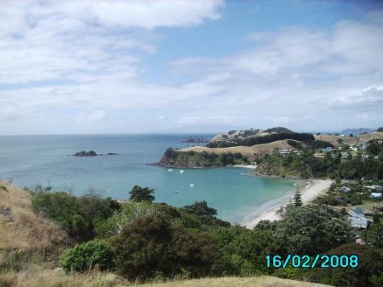 Waiheke Island, New Zealand: Welcome to Waihiki Island!