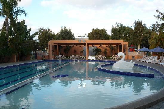 Pool area Picture of Kalbarri Beach Resort Kalbarri TripAdvisor