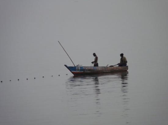 โกนากรี, กินี: ligne de vie