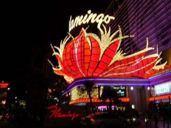 โรงแรมฟลามิงโกแอนด์คาสิโน ภาพถ่าย