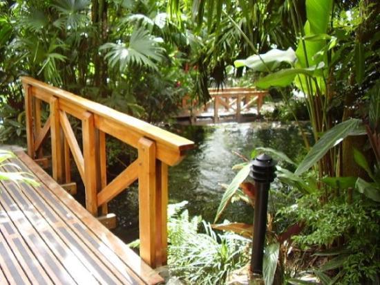 Tabacon Thermal Resort & Spa: Las espectaculares aguas termales de Tabacon muy cerca del volcán Arenal