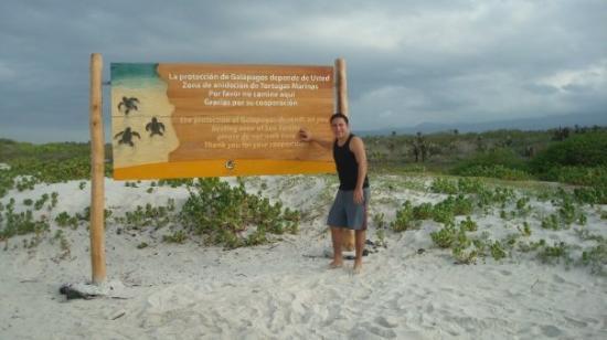Santa Cruz, Ecuador: TORTUGA BAY, al fin despues de caminar como 3 km :( jejeje pero vale la pena :)