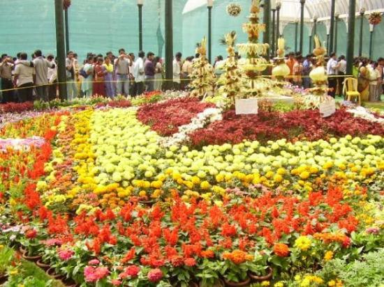 Bengaluru, India: flower show