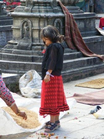 Katmandu, Nepál: Swayanbunath Stupa, Kathmandu - sorting grain