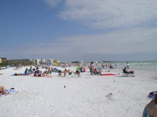 เซียสตาคีย์, ฟลอริด้า: Siesta Beach...  absolutely gorgeous powdered white sand with big body surfing waves.