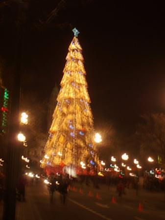 Christmas In Portugal.Christmas In Porto Portugal Picture Of Porto Porto