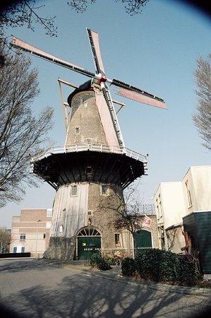 Red Lion Windmill (Molen De Roode Leeuw)