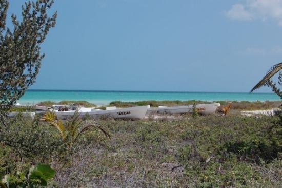 Holbox Island, เม็กซิโก: isla holox