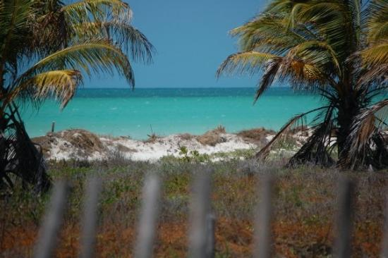 Holbox Island, เม็กซิโก: view from the bungalow