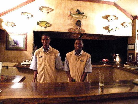 Shackletons: Kingsley & Teddy