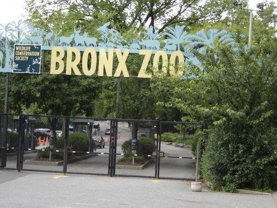 Bronx Metro Zoo