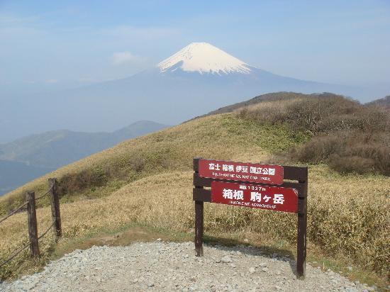Hakone Komagatake Ropeway: 駒ヶ岳からの富士山
