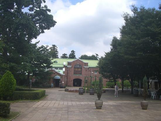 Chateau Kamiya: ワインセラー