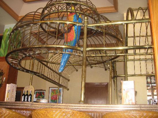Iberotel Palace: bar