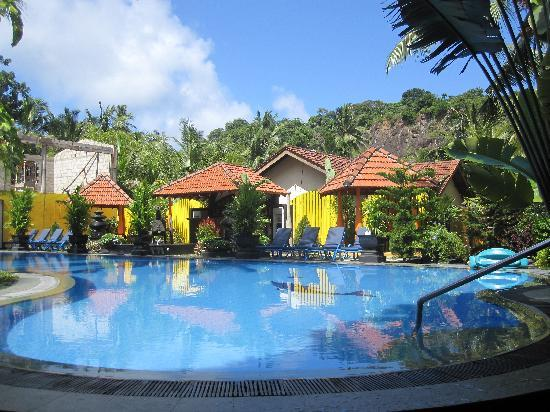 Flower Garden Hotel: the pool