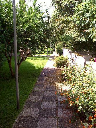 Residence Borgo Latino: Vista del residence,molto verde molte zanzare