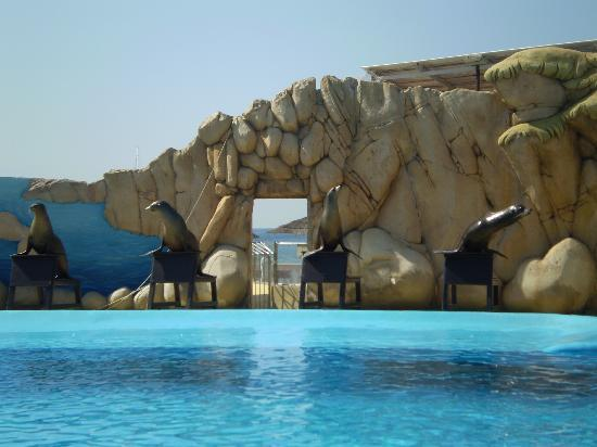 Calvia, Spain: Marineland