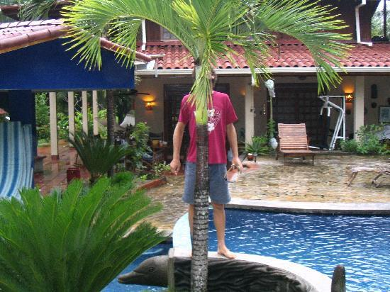 Montezuma Beach Houses: pool at the house