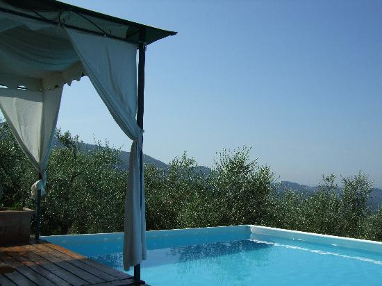 Farmhouse Olmo B & B: piscina