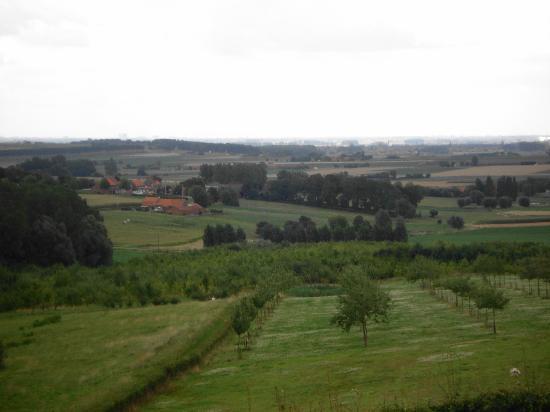 Hotel-Restaurant De Hollemeersch : View from the Patio