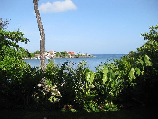 Turtle Bay Condominiums : View from our porch.