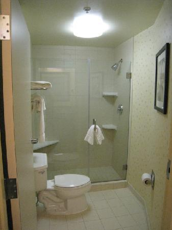 SpringHill Suites Omaha East/Council Bluffs, IA: walk in shower