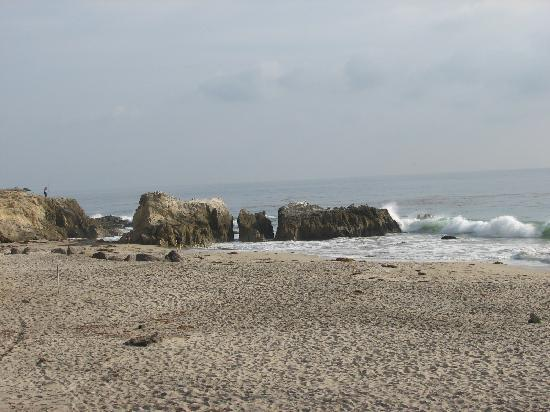 Leo Carrillo State Park and Beach: water