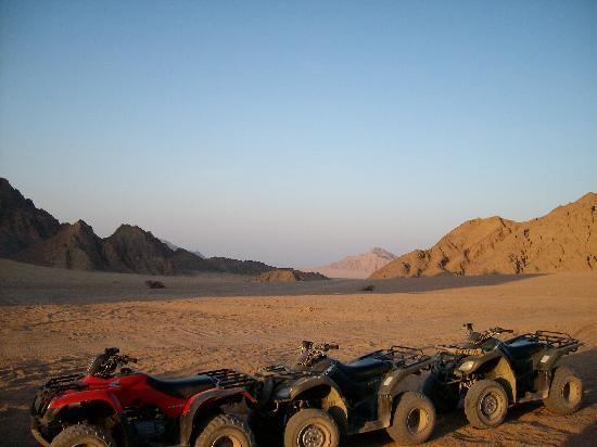 Jaz Mirabel Park: quad bikes in desert while we get a nice cold beer