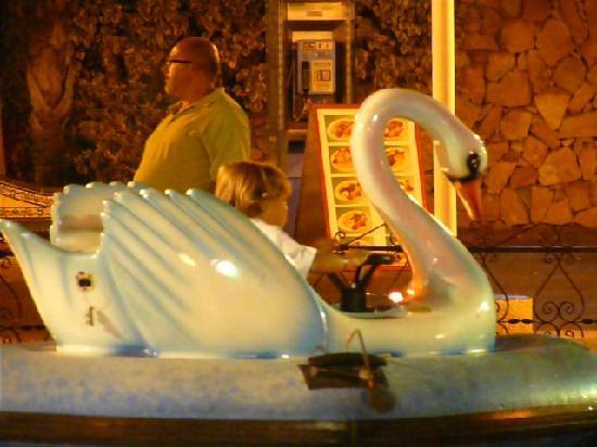 Tivoli World: Cisnes
