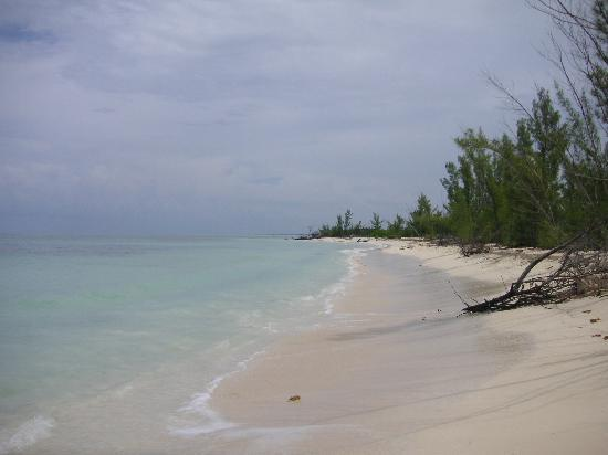 Cozumel Sailing: Private beach they take you to